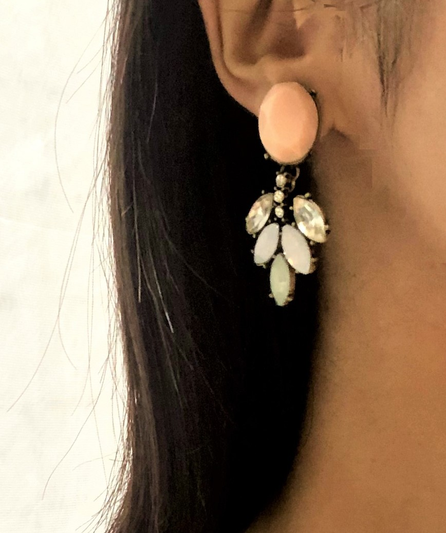 Smorky bijou Earrings